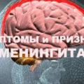 Менингит у взрослых: симптомы и признаки менингита