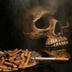 вредное воздействие никотина на организм