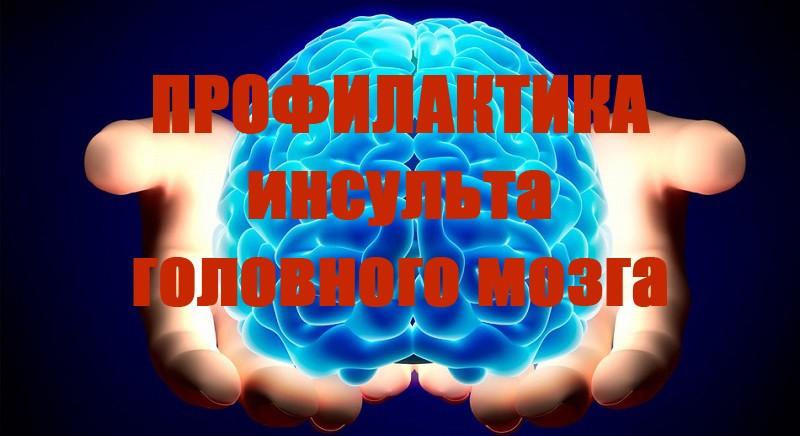 Профилактика инсульта головного мозга